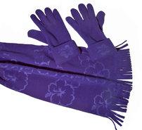 Sjaal-met-Handschoenen-(blauw)