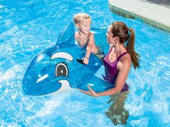 Dolfijn-voor-in-het-Zwembad