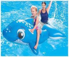 Dolfijn-voor-in-het-Zwembad-(157-cm)