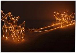 Lichtslang-Rendieren-met-Slee-(2-meter)
